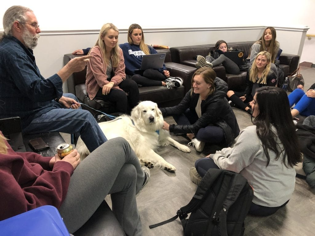 Bear loves being in the center of students