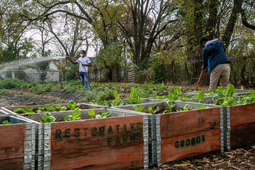 Restorative Farms is a cooperative that helps combat food deserts.