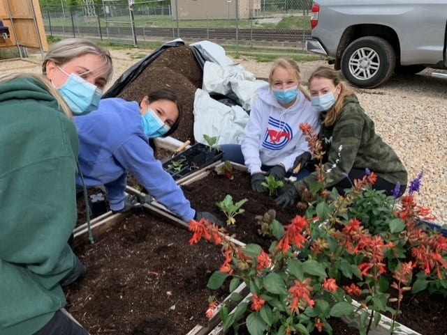 SMU students get their hands dirty planting and harvesting at Restorative Farms.